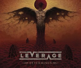 LEVERAGE determinus COVER